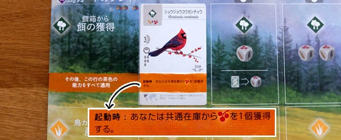 ウイングスパン:森林にいる鳥の能力を発動する