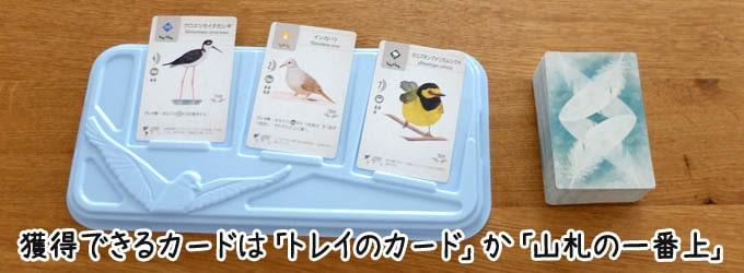 ウイングスパン:獲得するカードは「カードトレイにあるカード」か「山札の一番上」から選ぶ