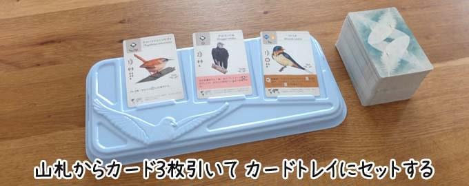 山札から鳥カード3枚引いて、カードトレイに表向きでセットする|ウイングスパン