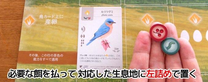鳥カードを出すときは対応している生息地に左詰めで置く|ウイングスパン