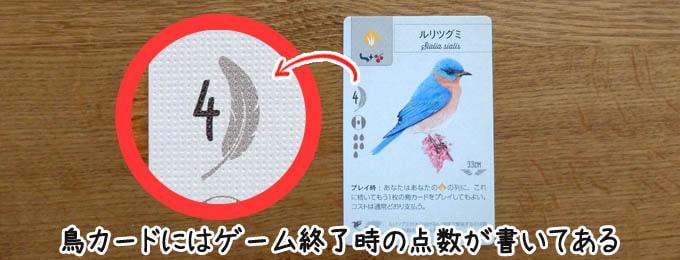 鳥カードの左側に「勝利点」が記されている|ウイングスパン