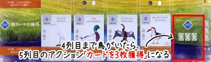 ウイングスパンのアクション「鳥カードの獲得」:湿地の4列目まで鳥がいたら、5列目のアクション「カードを3枚獲得」ができる