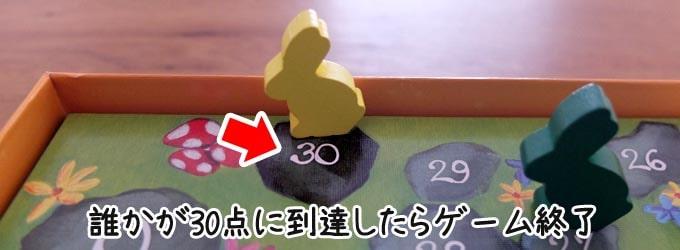 ディクシット(Dixit):誰かが30点に到達したらゲーム終了