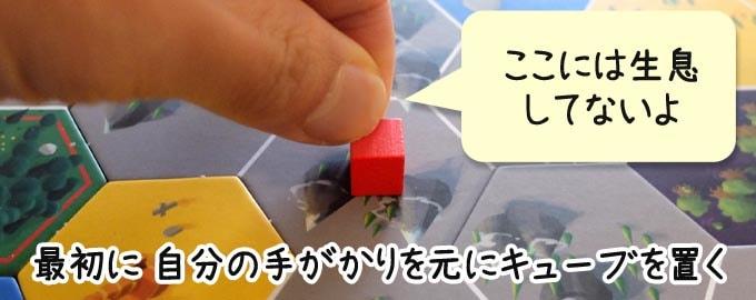 クリプティッドのルール:最初にキューブを2個ずつ置く