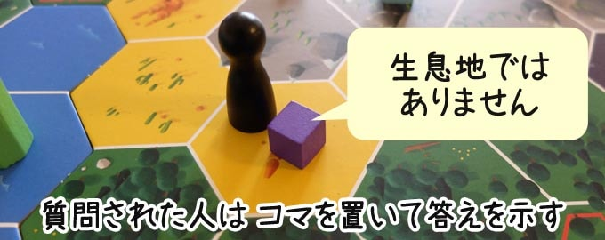 クリプティッド:質問された人は、生息できるか・できないかを「キューブ」か「ディスク」を置いて示す