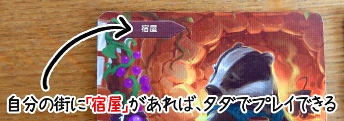ボードゲーム『エバーデール』:コストを払わずにプレイできるカード