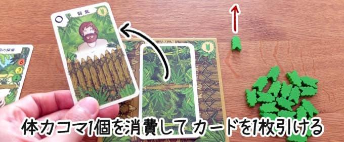 追加のロビンソンカードをめくる|ロビンソン漂流記