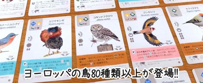 80種類以上の鳥カード|ウイングスパン拡張:欧州の翼